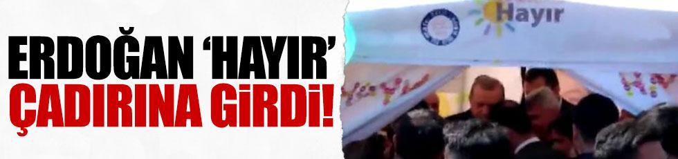 Erdoğan'dan, 'hayır' çadırına girdi