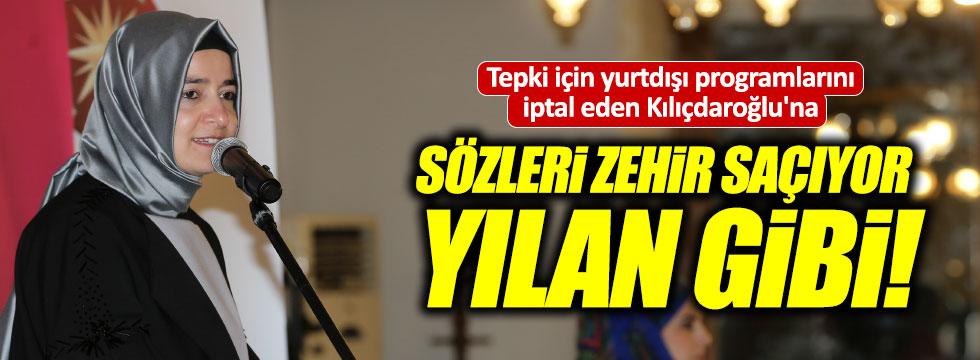 """Aile Bakanı, """"Kılıçdaroğlu, yılan gibi milleti zehirliyor"""""""