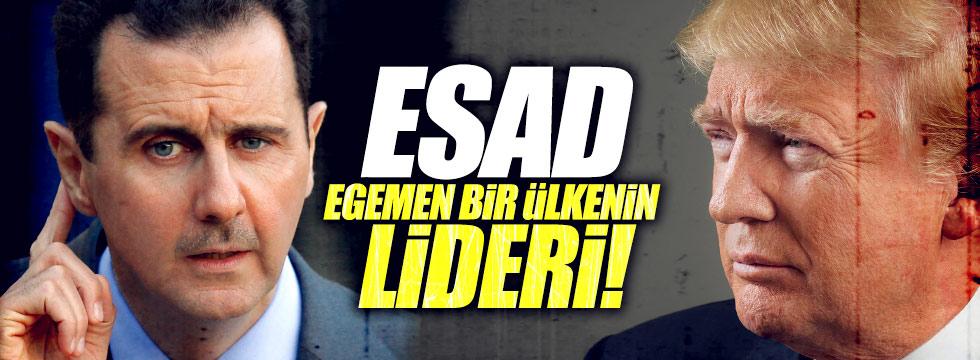 """ABD: """"Esad egemen bir ülkenin lideri"""""""