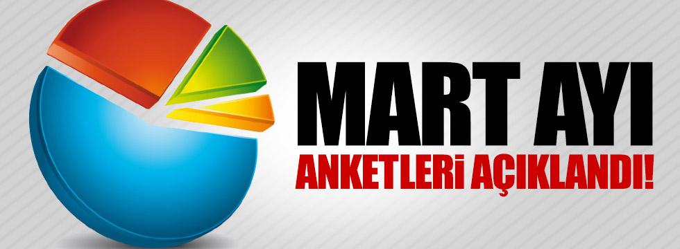 Mart ayı anketleri açıklandı!