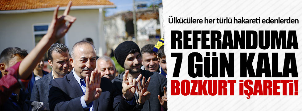 AKP'li Çavuşoğlu'ndan bozkurt işareti