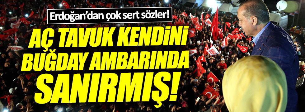Erdoğan: Aç tavuk kendini buğday ambarında sanırmış