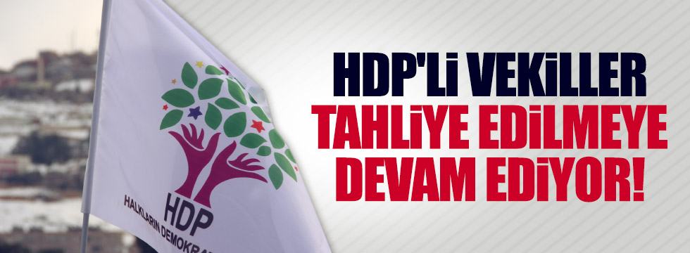HDP'li Nihat Akdoğan'a tahliye