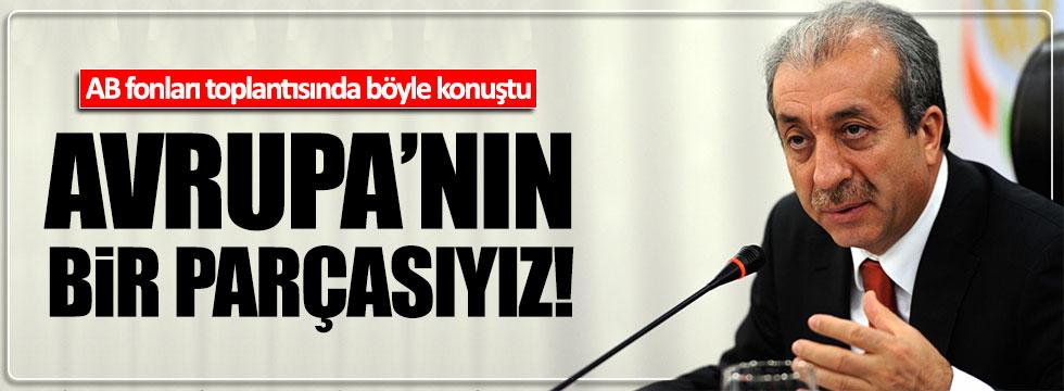 AKP'li Mehdi Eker AB fonları toplantısında konuştu