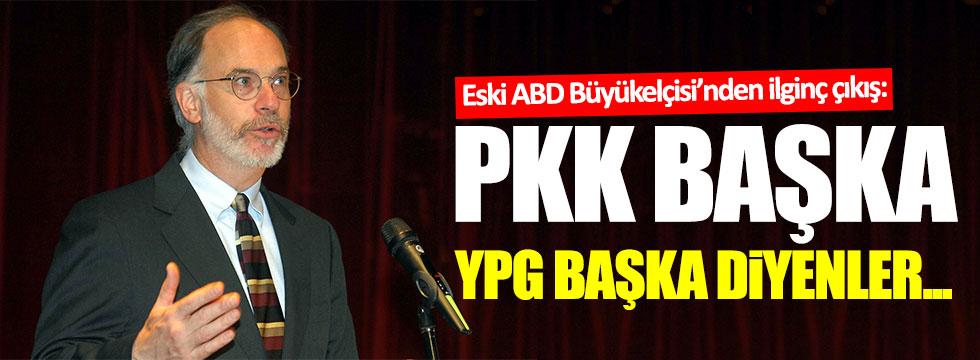 """Eski ABD büyükelçisi: """"PKK başka, YPG başka diyenler..."""""""