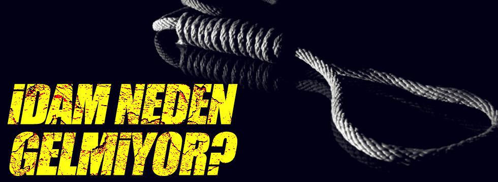 Sinan Oğan: İdam neden gelmiyor?