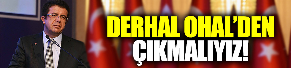 """Zeybekci: """"Türkiye derhal OHAL'den çıkmalı"""""""
