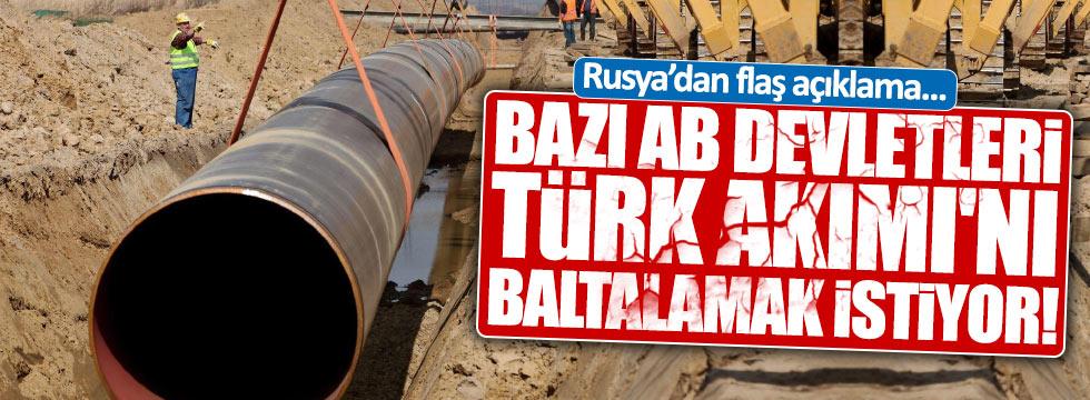 Bazı AB devletleri Türk Akımı'nı baltalamakistiyor