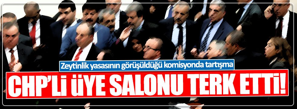 AKP'lilerle tartışan CHP'li Didem Engin, komisyonu terk etti