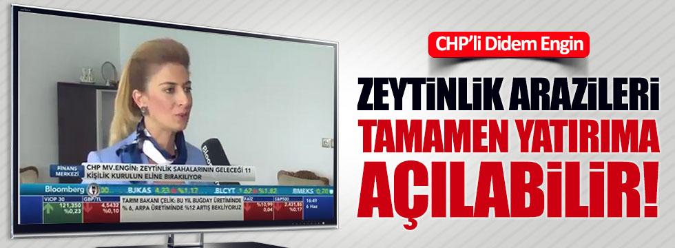 CHP'li Didem Engin zeytinliklerle ilgili maddeleri anlattı
