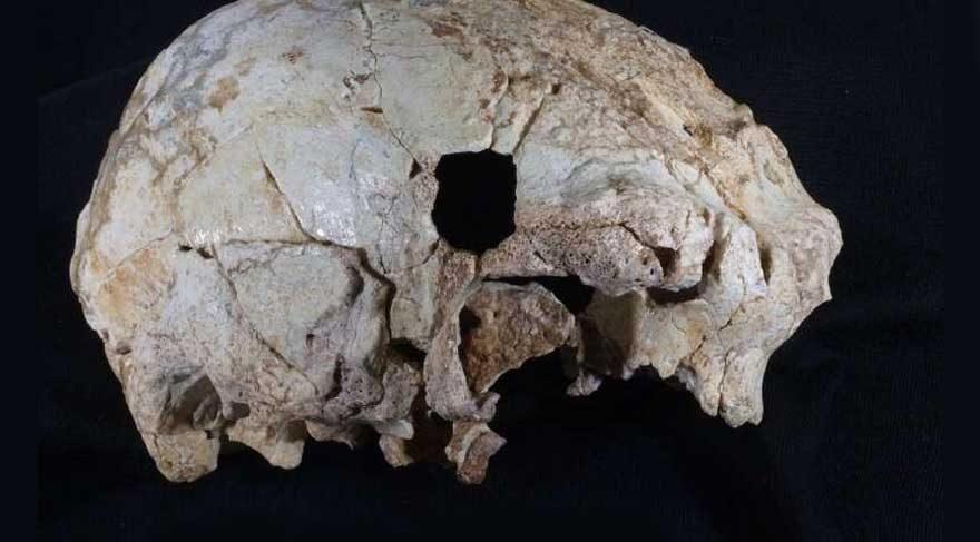 300 bin yaşında kafatası bulundu