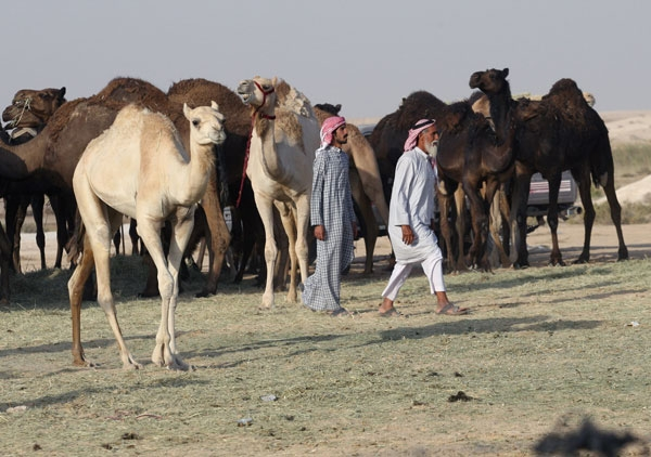 Körfez krizi develeri vurdu