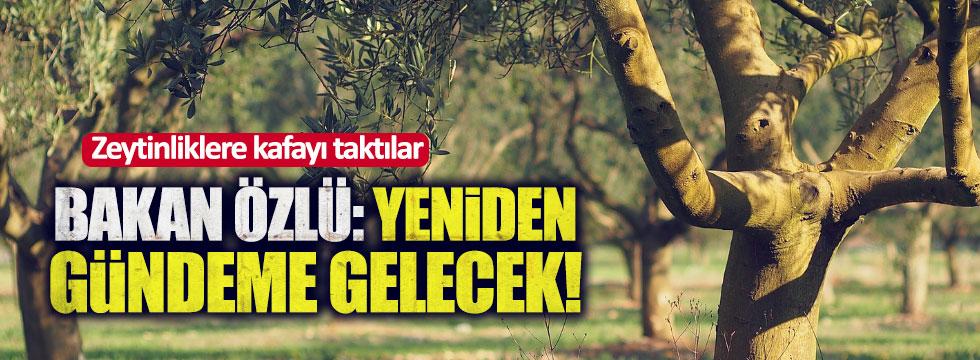 """Sanayi Bakanı'ndan kritik """"Zeytinlik"""" açıklaması!"""