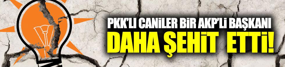 PKK'lı caniler bir AKP'li Başkanı daha şehit etti!