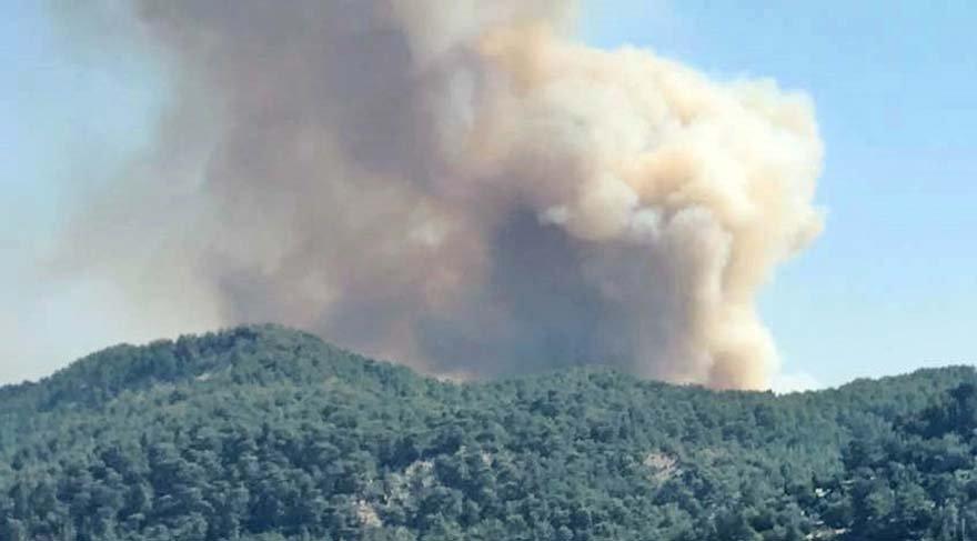Çanakkale ve Antalya'da yangın