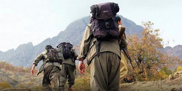 Başında ödül olan PKK'lı teslim oldu