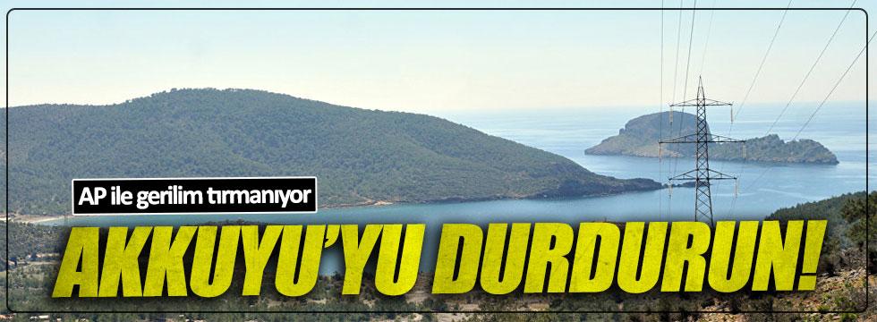 AP'den Türkiye'ye: Akkuyu'yu durdurun