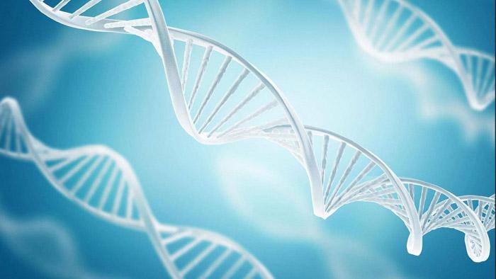 Lösemi ile savaş için yeni gen tedavisi