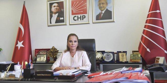 'AKP, kötü bir  anı olarak kalacak'