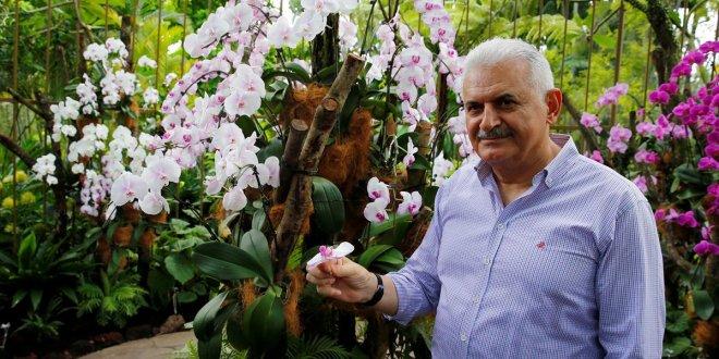 Başbakan'ın adını orkideye verdiler