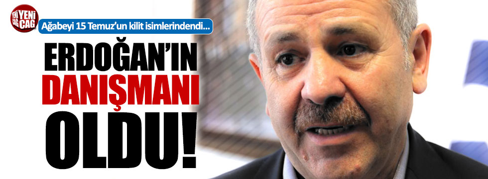 Şaban Dişli, Erdoğan'ın danışmanı oldu