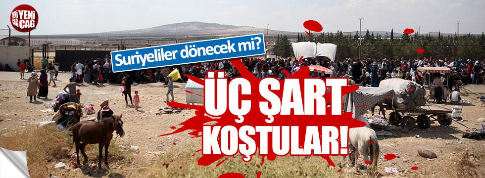 Suriyeliler Türkiye'ye dönmemek için 3 şart sundu!