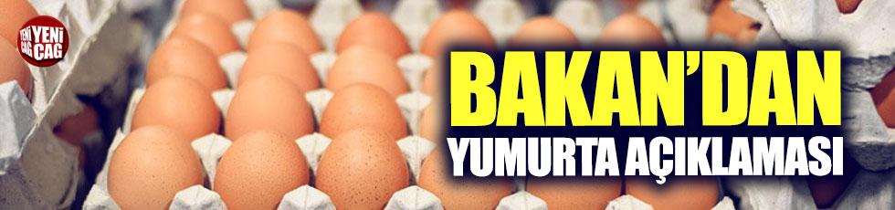 Bakan'dan yumurta açıklaması