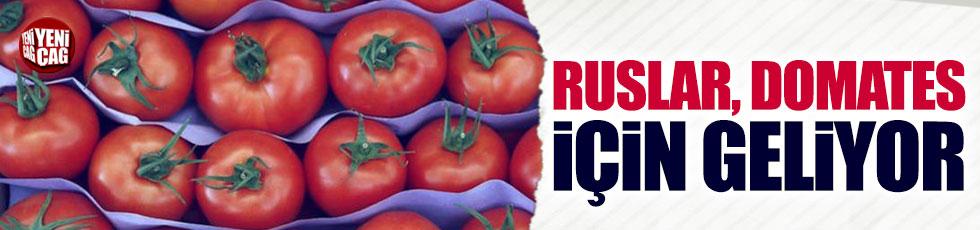 Ruslar domates için geliyor