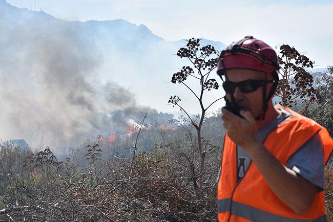 Muğla'daki yangın evlere metreler kala önlendi