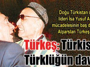 Türkeş: Türkistan Türklüğün davası