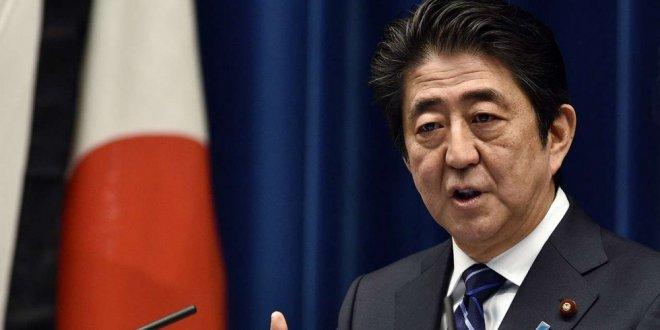 Japonya'dan erken seçim kararı