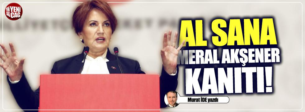 Al sana Meral Akşener kanıtı!