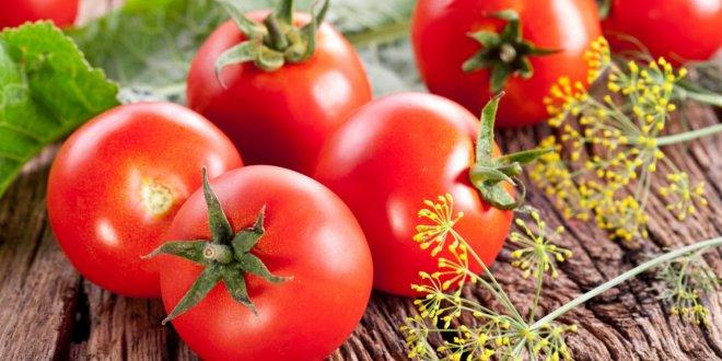 Rusya'dan yeni domates açıklaması