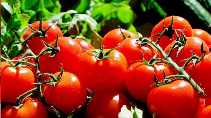 Rusya'dan 'domates' açıklaması