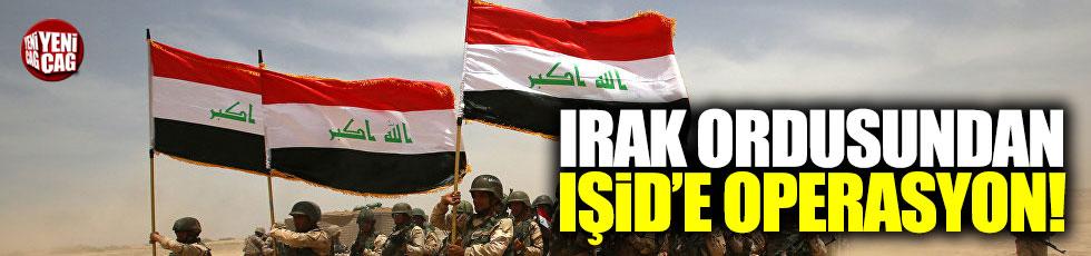 Irak ordusundan IŞİD'e operasyon