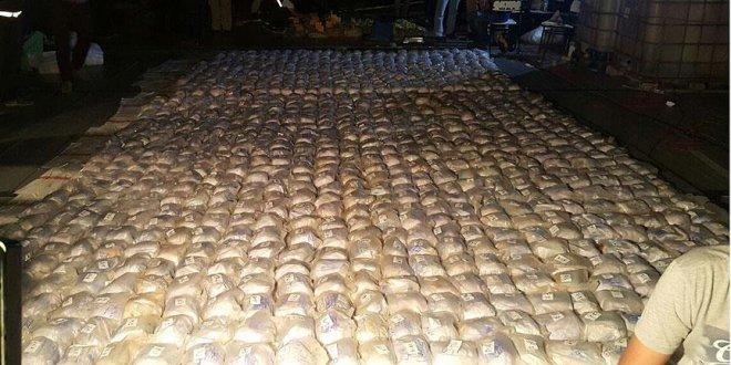 Kolombiya'da 12 ton kokain ele geçirildi