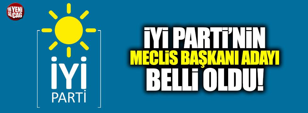 İYİ Parti'nin meclis başkanı adayı Yusuf Halaçoğlu