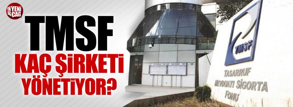 TMSF kaç şirketi yönetiyor?