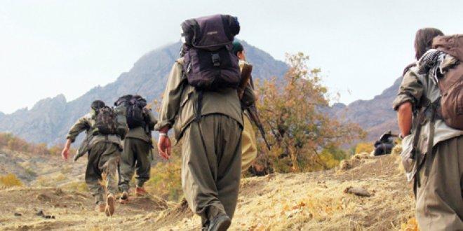 PKK'nın iki üst düzey yöneticisi öldürüldü