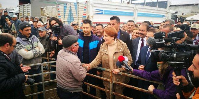 Edirne'de neler oldu? Akşener'in ziyaretinden notlar