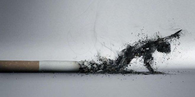 Sigaraya 257 milyar lira harcandı