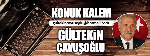 Erciş'te Türkeş adını yaşatmak /  Gültekin Çavuşoğlu
