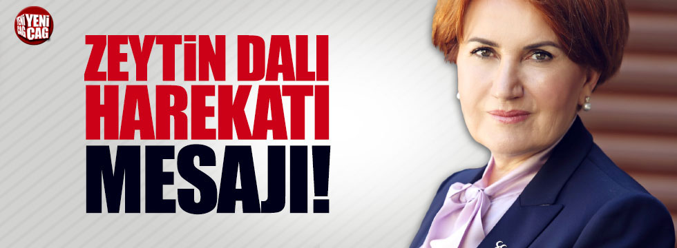 """Meral Akşener'den """"Zeytin Dalı Harekatı"""" açıklaması!"""