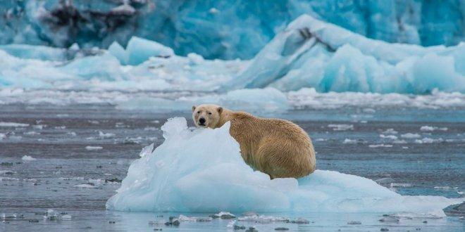 Küresel deniz seviyesindeki artış hızlanıyor