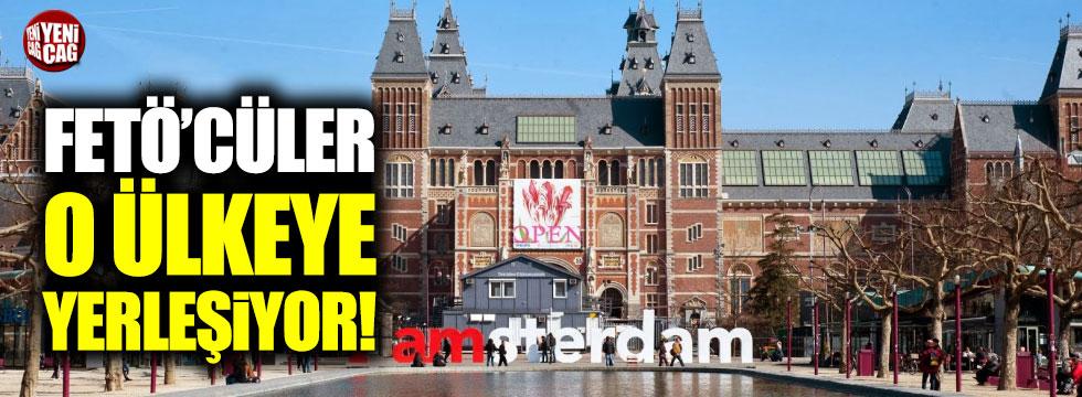 Hollanda FETÖ'cülere kucak açıyor