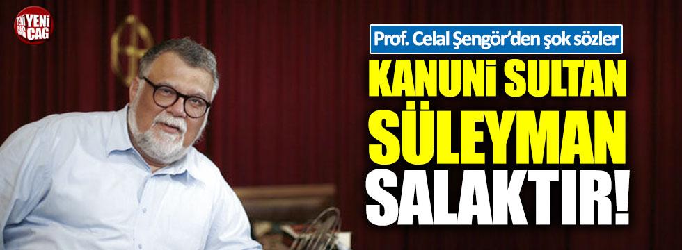 Celal Şengör Kanuni Sultan Süleyman için 'salak' dedi