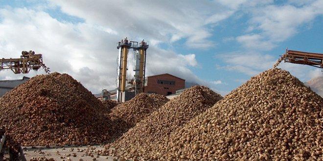 """""""Saray'ın 13 günlük harcaması şeker fabrikalarının tüm zararını karşılıyor"""""""