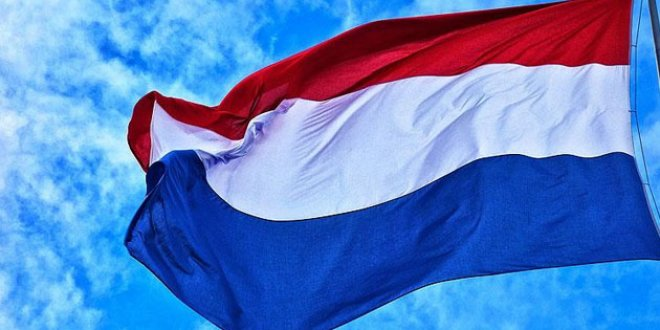 Hollanda'da İslam karşıtı kampanyaya tepki