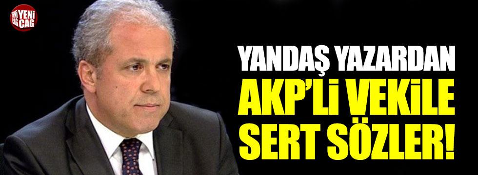 Yandaş yazardan Şamil Tayyar'a sert sözler