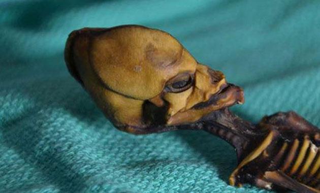 Uzaylı iskeletinin sırrı çözüldü
